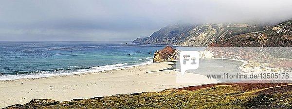 Sandstrand an der Pazifikküste  bei Point Sur  Kalifornien  USA  Nordamerika