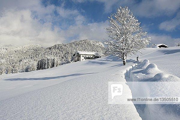 Winterlandschaft  verschneites Bauernhaus  Bischofswiesen  Berchtesgadener Land  Oberbayern  Bayern  Deutschland  Europa