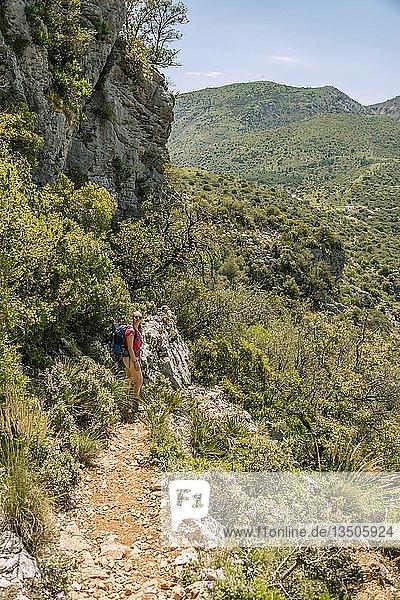 Wanderin auf einem Wanderweg  Die Grüne Schlucht  Garganta Verde  Sierra de Cádiz  Cádiz  Spanien  Europa