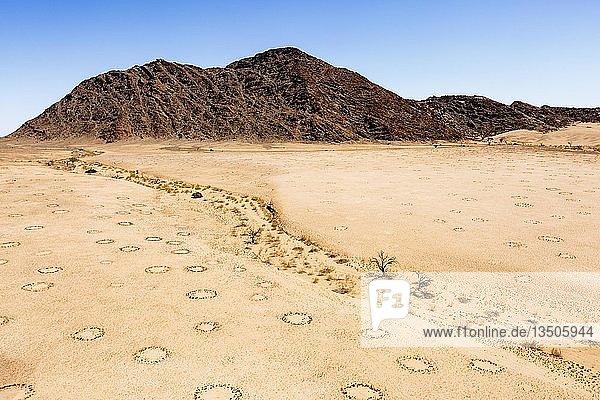 Luftaufnahme  Feenkreise im Wüstensand  Namib-Wüste  Namib-Naukluft-Nationalpark  Namibia  Afrika