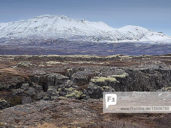 Rift valley between two continental plates  Thingvellir National Park  UNESCO World Heritage Site  Golden Circle  Iceland  Europe