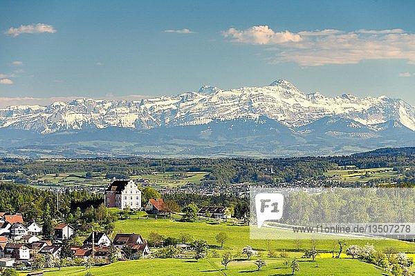 Ausblick auf das Schloss Freudental  hinten Bergkette mit Alpstein und Säntis  Allensbach  Bodenseeregion  Baden-Württemberg  Deutschland  Europa