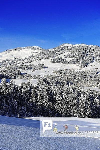 Schneeschuhwanderer  Gruberberg  Hopfgarten  Kitzbüheler Alpen  Tirol  Österreich  Europa