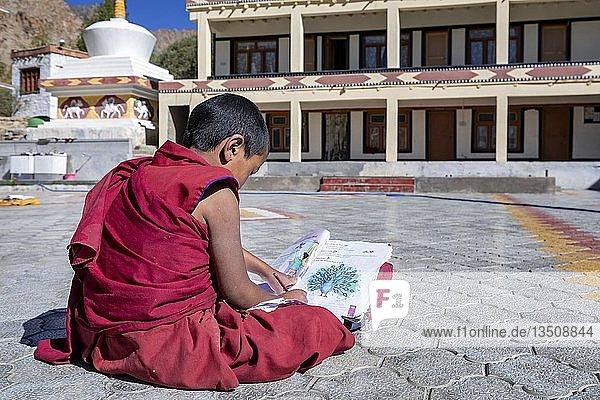 Ein kleiner Schuljunge  studiert im Likir Kloster oder Likir Gompa  Ladakh  Kaschmir  Indien  Asien