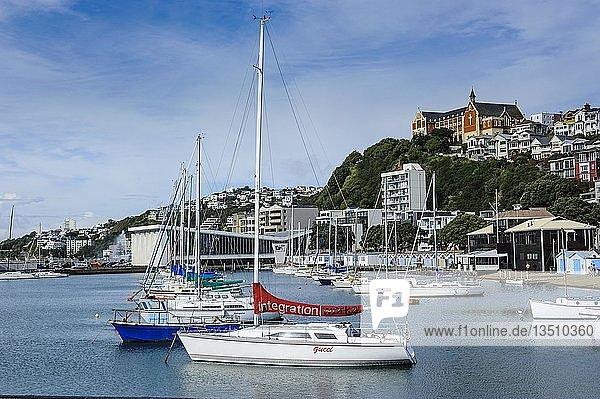 Kleine Boote im Hafen von Wellington  Nordinsel  Neuseeland  Ozeanien