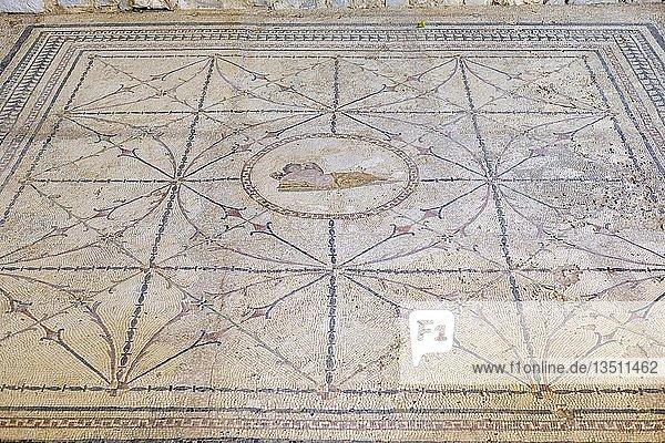 Römisches Bodenmosaik mit Gott Hypnos  Risan  Bucht von Kotor  Provinz Kotor  Montenegro  Europa