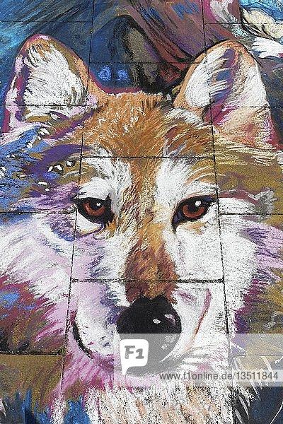 Hund  Wolf  Straßenmalerei  Streetart  Geldern  Nordrhein-Wesfalen  Deutschland  Europa