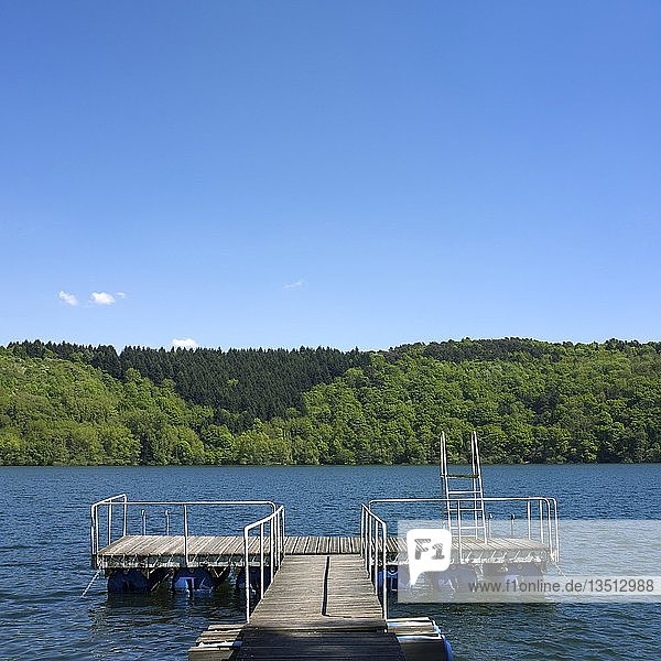 Swimming diving board and wooden pontoon at the edge of a lake surrounded the trees  Puy de Dome department  Auvergne  France  Europe