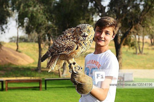 Jugendlicher hält Uhu bei einer Falkner Show im Al Wadi Desert Hotel  Ritz Carlton  Ras al Khaimah  Vereinigte Arabische Emirate  Asien