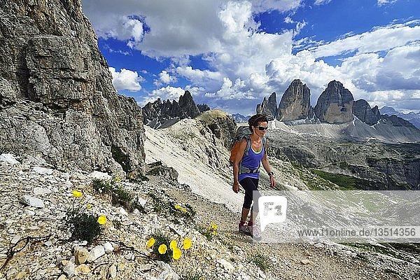 Wanderin am Sextner Stein  dahinter die Nordwände der Drei Zinnen  Sextener Dolomiten  Hochpustertal  Südtirol  Italien  Europa