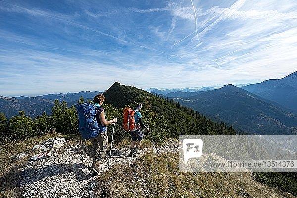 Hikers crossing the Blauberge mountains  crossing from Predigtstuhl via Blaubergschneid  Blaubergkopf and Karschneid to Halserspitz  Wildbad Kreuth  Upper Bavaria  Bavaria  Germany  Europe