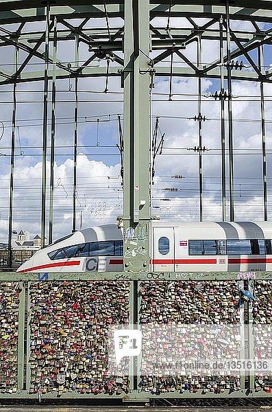 Vorhängeschlösser  Liebesschlösser  am Sicherheitsgitter  das den Fußweg von den Eisenbahngleisen an der Hohenzollernbrücke trennt  Köln  Nordrhein-Westfalen  Deutschland  Europa