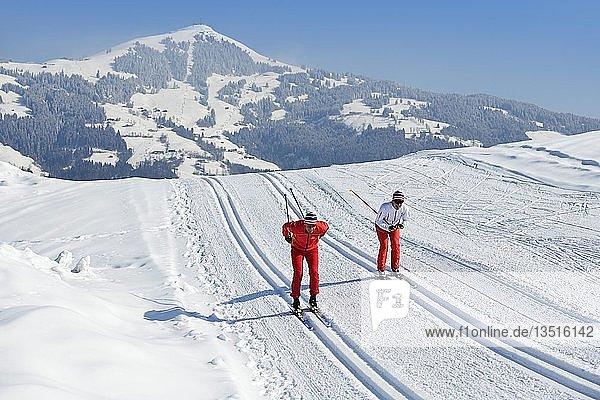 Skilangläufer auf dem Penningberg mit Blick auf die Hohe Salve  Hopfgarten  Kitzbüheler Alpen  Tirol  Österreich  Europa