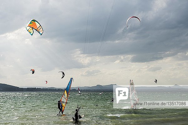 Kitesurfers and windsurfers in storm  on Lake Constance  Reichenau island  Baden-Württemberg  Germany  Europe