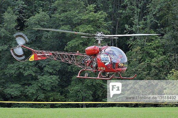 Leichter Mehrzweckhubschrauber Agusta Bell 47 G2  Europas großes Oldtimer-Fliegertreffen auf der Hahnweide  Kirchheim-Teck  Baden-Württemberg  Deutschland  Europa