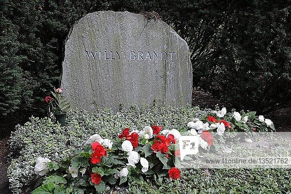 Ehrengrab von Willy Brandt  ehemaliger Bundeskanzler  Waldfriedhof Zehlendorf  Berlin  Deutschland  Europa