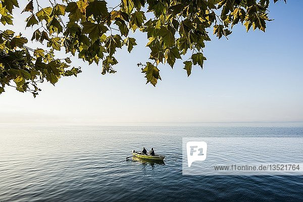 Two anglers in one boat  morning mood  Lake Constance  Baden-Württemberg  Germany  Europe