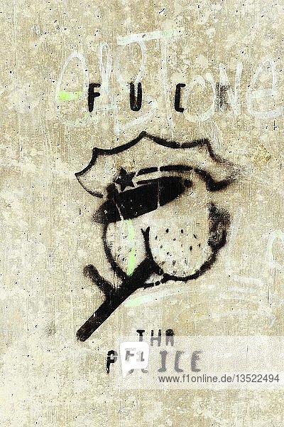 Anti-Polizei-Graffito  Deutschland  Europa