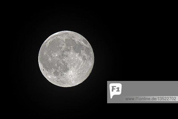 Mond  Erdmond  Vollmond gesehen von der Nordhalbkugel  Deutschland  Europa