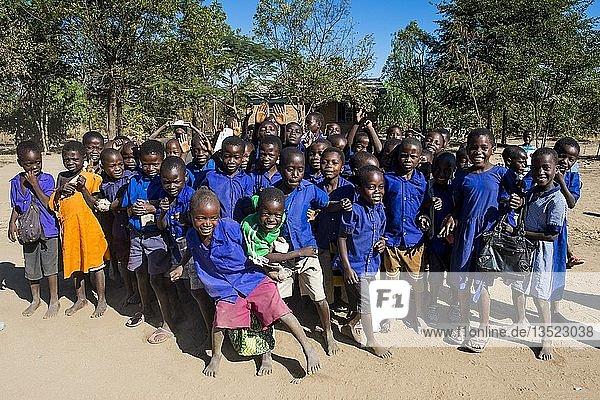 Viele Kinder  Schüler in Schuluniform  Liwonde Nationalpark  Malawi  Afrika