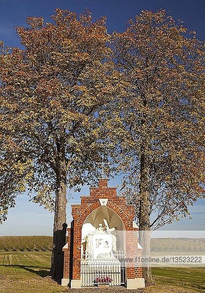 Kreuzweg Station im Herbst  Stromberg  Oelde  Münsterland  Nordrhein-Westfalen  Deutschland  Europa