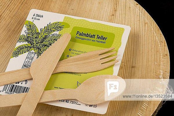 Einwegbesteck aus Holz  recyclebar  Teller aus Palmblättern  umweltfreundlich
