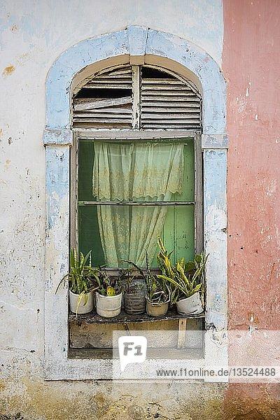Fenster an einem noch heute genutzten Wohngebäude aus der Kolonialzeit  Roça Água Ize  Insel São Tomé  São Tomé und Príncipe
