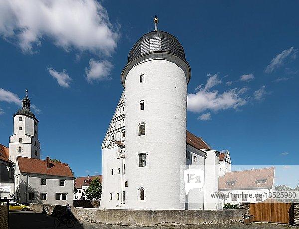 Schloss  Ringelnatzstadt Wurzen  Sachsen  Deutschland  Europa