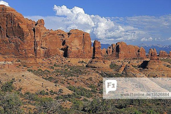 '''Garden Eden'' bei Sonnenaufgang  Arches Nationalpark  Utah  Südwesten  USA  Nordamerika'