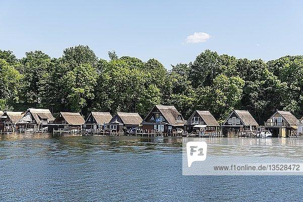 Bootshäuser,  Ferienhäuser,  Ziegelsee,  Schwerin,  Mecklenburg-Vorpommern,  Deutschland,  Europa