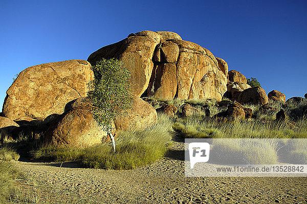 Devils Marbles bei Tennant Creek  Northern Territory  Australien  Ozeanien