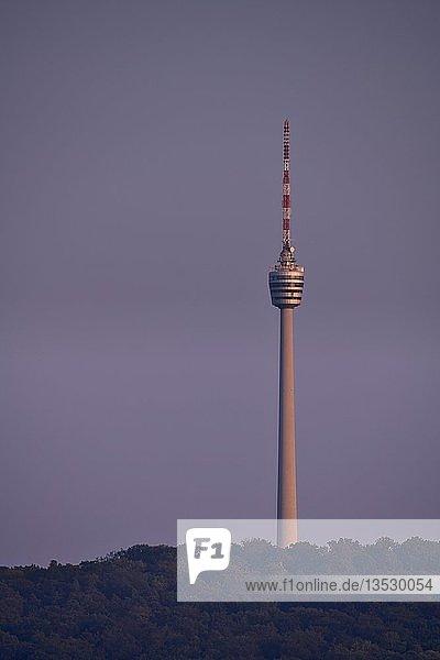 Fernsehturm im Abendlicht  Wangener Höhe  Stuttgart  Baden-Württemberg  Deutschland  Europa