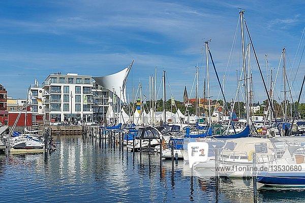 Yachthafen mit Segelyachten  Eckernförde  Schleswig-Holstein  Deutschland  Europa