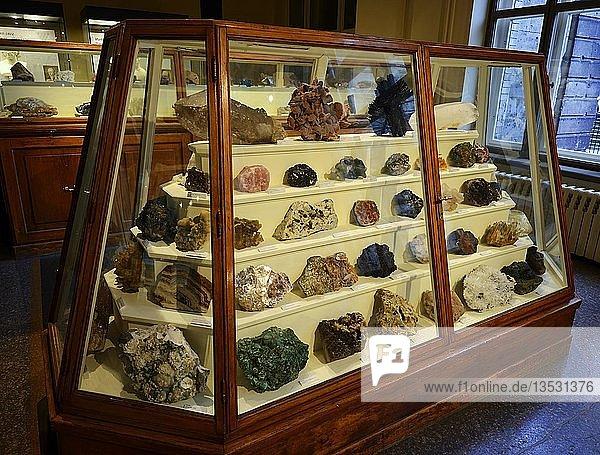 Verschiedene Mineralien in Vitrinen  Naturkundemuseum  Museum für Naturkunde  Berlin  Deutschland  Deutschland  Europa