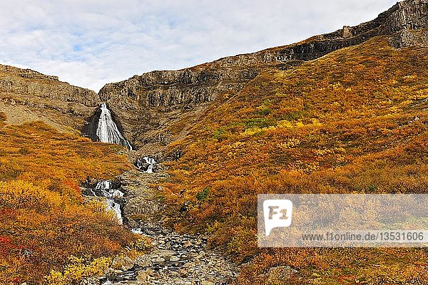 Waterfall in autumn landscape  Westfjords  Iceland  Europe