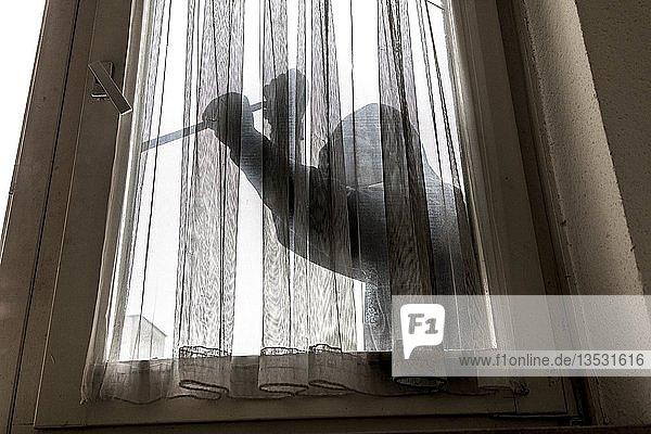 Symbolbild Wohnungseinbruch  Täter versucht in eine Wohnung einzubrechen  hebelt ein Fenster mit Werkzeug auf