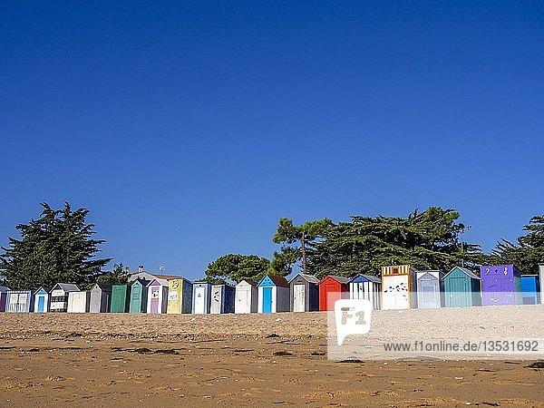 Colourful beach cabins at Saint-Denis-d'Oléron  Oleron Island  Charente-Maritime department  Nouvelle-Aquitaine  France  Europe