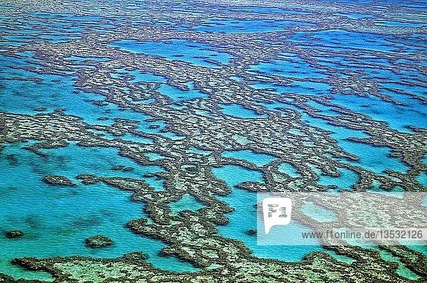 Riffe und Atolle des Great Barrier Reef  Australien  Ozeanien