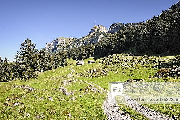 Landwirtschaftsweg und Wanderweg auf der Alp Soll  am Horizont der hohe Kasten  links der Kamor  Kanton Appenzell Innerrhoden  Schweiz  Europa