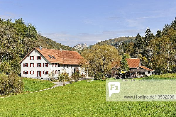 Hofsiedlung im oberen Donautal  am Horizont Schloss Bronnen  Landkreis Tuttlingen  Baden-Württemberg  Deutschland  Europa