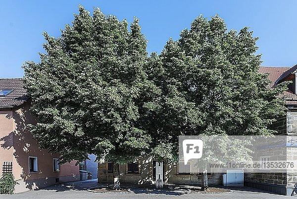 Ehemaliges jüdisches Wohnhaus mit Gedenkstele 8.November der Pogromnacht  Hauptstrasse 47  Forth  Mittelfranken  Bayern  Deutschland  Europa