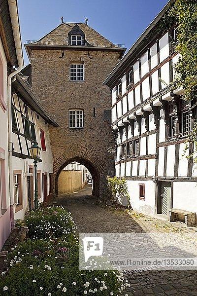 Hirtenturm in der Altstadt  Blankenheim  Eifel  Nordrhein-Westfalen  Deutschland  Europa