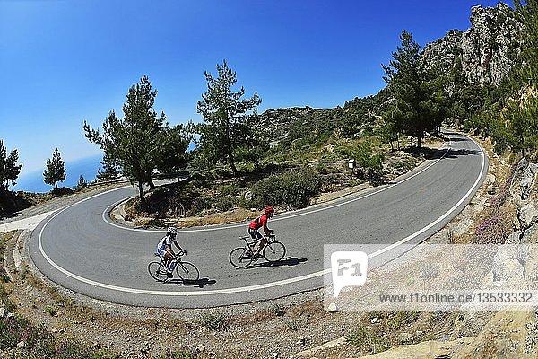 Zwei Rennradfahrer auf kurviger Straße  bei Kalamafka  Kreta  Griechenland  Europa