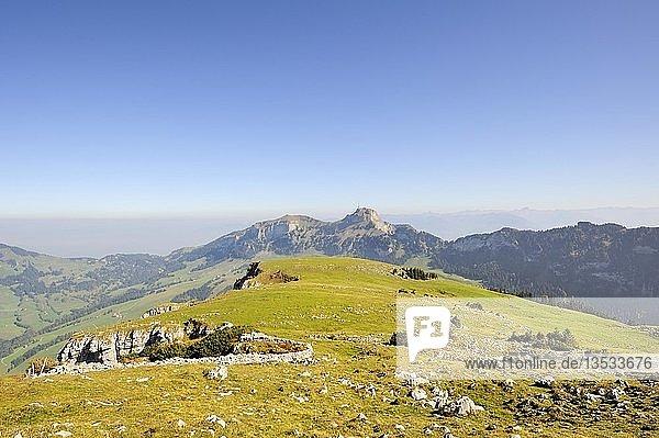 Viehweide an der Abbruchkante am Hochplateau Alpsigel  1730 m  in den Appenzeller Alpen mit Blick zum Hohen Kasten  1795 m  Kanton Appenzell-Innerrhoden  Schweiz  Europa