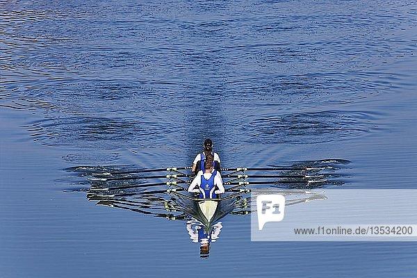 Ruderer rudern im Ruderboot  Vierer ohne Steuermann  Main Donau Kanal  bei Nürnberg-Katzwang  Mittelfranken  Franken  Bayern  Deutschland  Europa