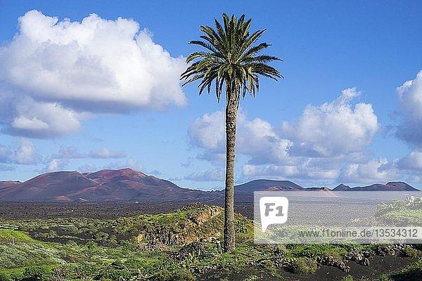 Landschaft zwischen Yaiza und Uga  hinten die Feuerberge Montanas del Fuego  Nationalpark Timanfaya  Lanzarote  Kanarische Inseln  Spanien  Europa