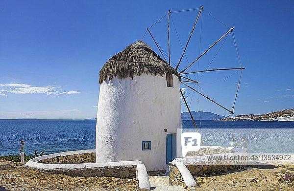 Windmühle an der Küste  Mykonos-Stadt  Mykonos  Kykladen  Ägäis  Griechenland  Europa