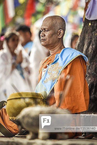 Buddhistischer Meister meditiert am Bodhi Baum am Mayadevi-Tempel  Geburtsort von Buddha  Lumbini  Nepal  Asien