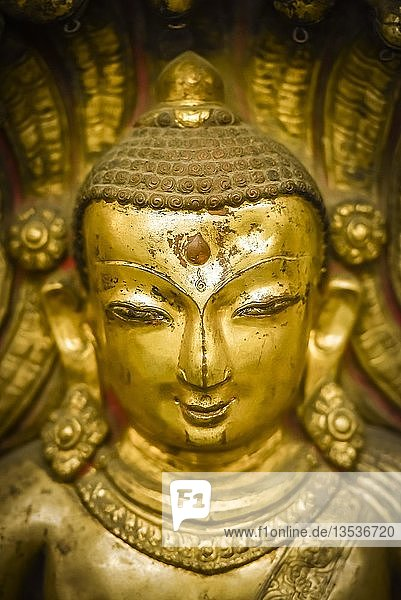 Kopf einer antiken Buddhastatue  Nationalmuseum  Kathmandu  Himalaya Region  Nepal  Asien