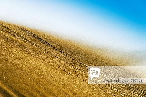 Sand weht bei Sturm über den Kamm einer Düne  Maspalomas  Gran Canaria  Kanaren  Spanien  Europa